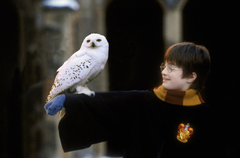 映画「ハリー・ポッターと賢者の石」場面写真