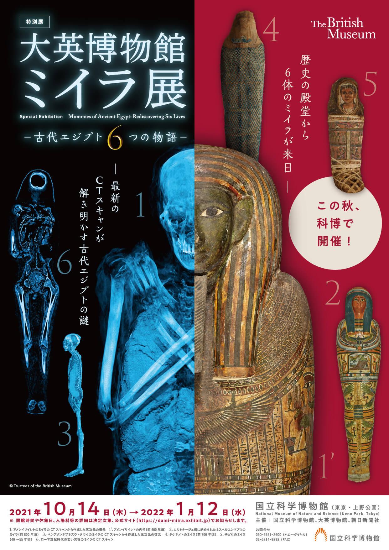 特別展「大英博物館ミイラ展 古代エジプト6つの物語」